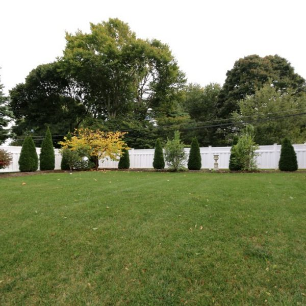White vinyl fencing surrounding shrubbery